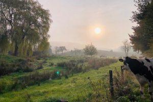 Natuur & boerderij beleving