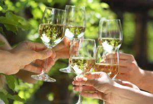 Fromberg wijnen